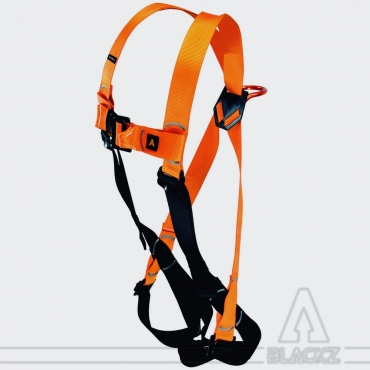 Fall arrester harness - 2 points