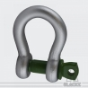 Standard Shackle Green Pin® 1t